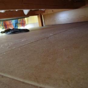 17enne incinta ritrova verginit sotto il letto e perde il bambino per lo shockil resto del panino - Lo trovi sotto il letto ...