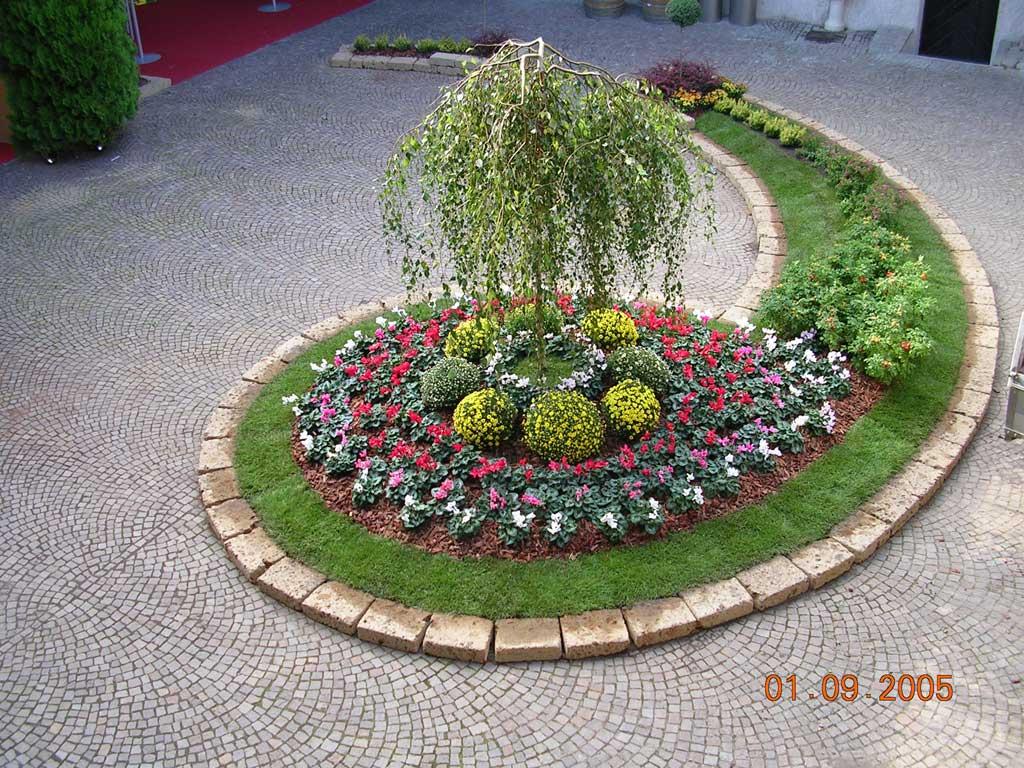 Nasce iuola l 39 app dedicata agli appassionati di giardinaggio for Aiuole fiorite immagini